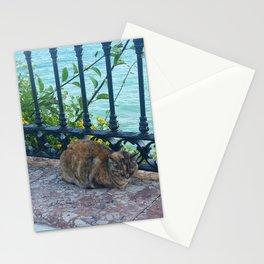 Cat Nap Near the Sea Stationery Cards