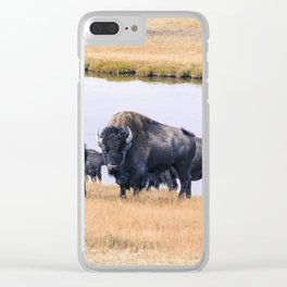 Bisons of Yellowstone Clear iPhone Case
