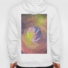 Abstract Mandala 328 Hoody