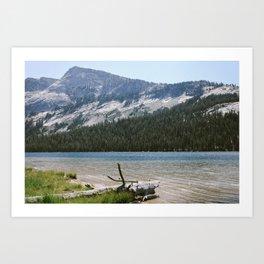 Tenaya Lake Art Print