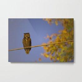 Owl Bokeh Metal Print