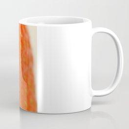 Miam Miam Strawberry Coffee Mug