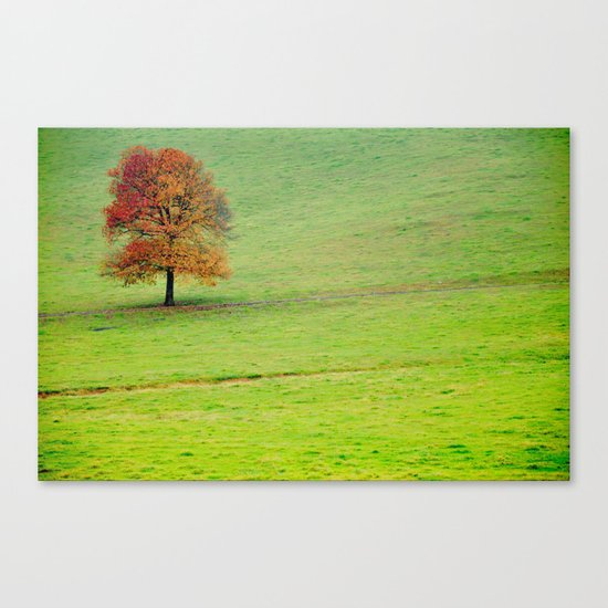 The Coming Chill Canvas Print