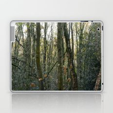 Wood for the trees Laptop & iPad Skin