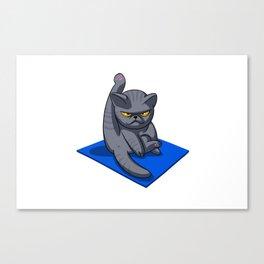 Yoga cat - Angry cat - grey cat - fat cat Canvas Print