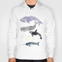 whales Hoodies featuring WHALES by Shannon Kirsten