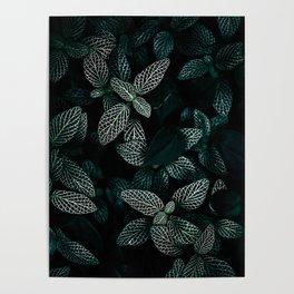 Dark Leaves 3 Poster