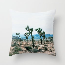 Outer South Throw Pillow