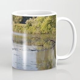 Longwood Gardens - Spring Series 103 Coffee Mug