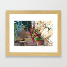 Worn steps and flowerpots Framed Art Print