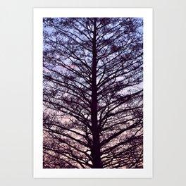 Splitting Sunset Art Print