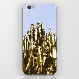 Sticky Cacti iPhone Skin