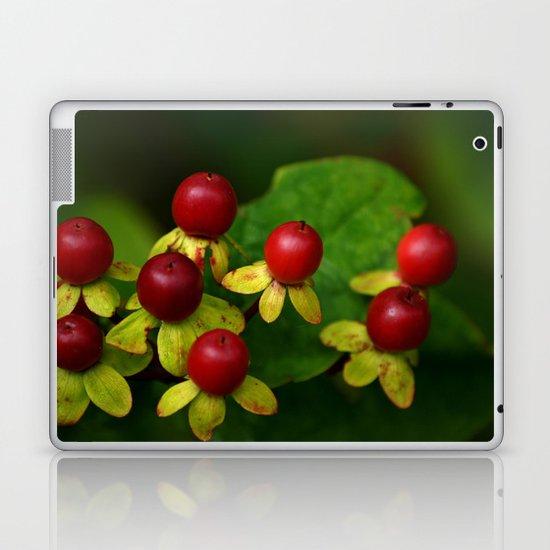 Berry Good! Laptop & iPad Skin