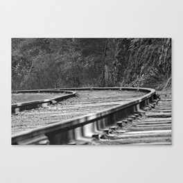 Close to the ground Canvas Print