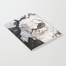 bark abstact no1 Notebook