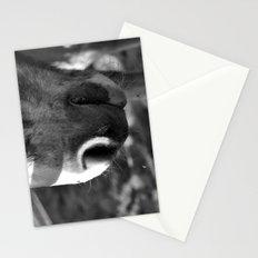 Fuzzy muzzle Stationery Cards