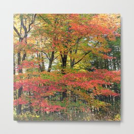 Colorful Forest Trees Metal Print