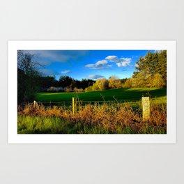 Golden Evening Light Across A Field Art Print