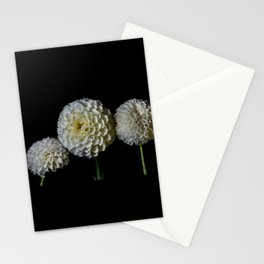 Flowers…subtle colors - 166 Stationery Cards