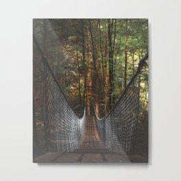 Foster Falls Trails Metal Print