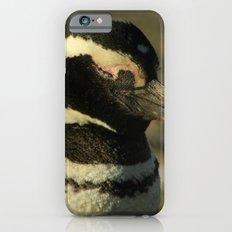 Penguin of Magellan Slim Case iPhone 6s