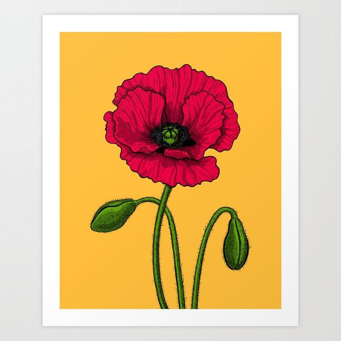 Red poppy drawing Art Print