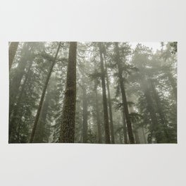 Memories of the Future - nature photography Rug