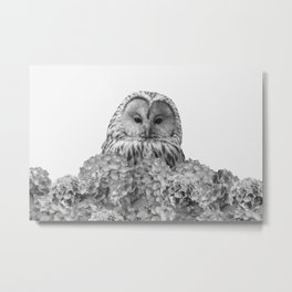 Grey Owl Hydrangea Flowers - black & white Metal Print