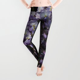 Wisteria With Garden Background Leggings