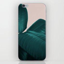 Ficus Elastica #4 #art #society6 iPhone Skin