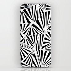 Ab Fan Spray iPhone & iPod Skin
