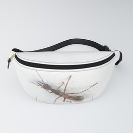 if your speech is antiquated, to arouse laughter you are alas fated! Fanny Pack