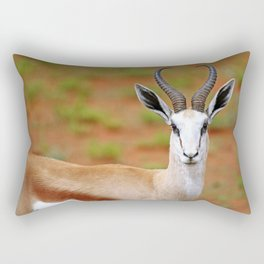 Springbok in Namibia, wildlife Rectangular Pillow
