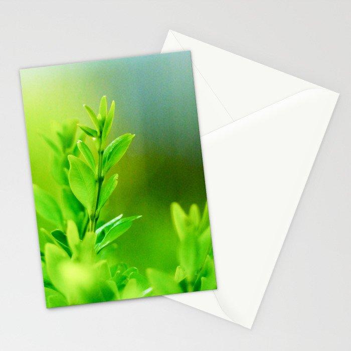 Green Harmony Stationery Cards