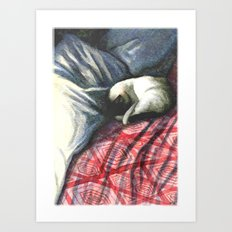 siamese on rumpled bed Art Print
