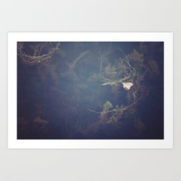 Murky Waters Art Print
