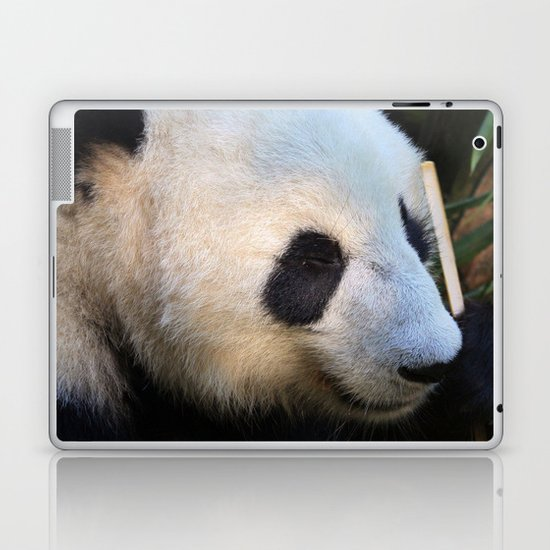 Panda Nap Laptop & iPad Skin