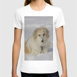 Patricia the Snow Dog T-shirt