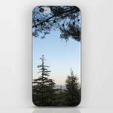 Blue sunset. Into the woods iPhone & iPod Skin