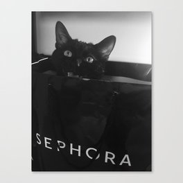 Coal playing Canvas Print