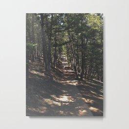 Muley Crossing Metal Print
