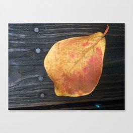 One Fallen Leaf Canvas Print