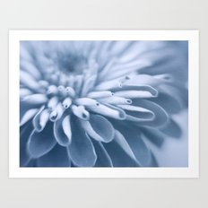 Snow Touch Art Print