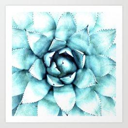 Succulent - A Watercolour Mandala Art Print