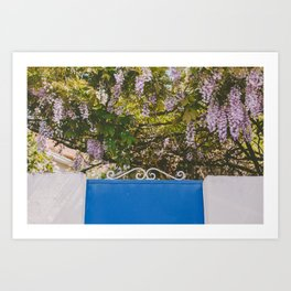 Wisteria backyard Art Print