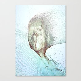 Fragments of a face Canvas Print