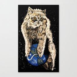 Floyd the lion Canvas Print