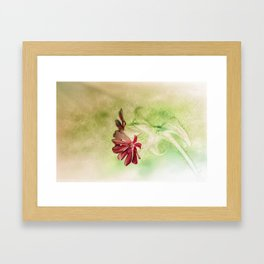 Campion Inversion Framed Art Print