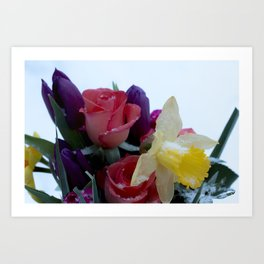 Vibrant bouquet of flowers in the snow Art Print