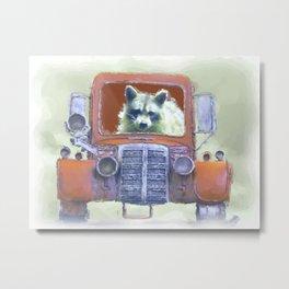 Raccoon Driving Old Red Truck Metal Print